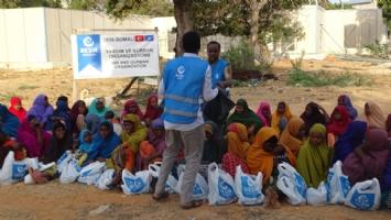 Somali Yardımları,Yurtdışı Yardımları